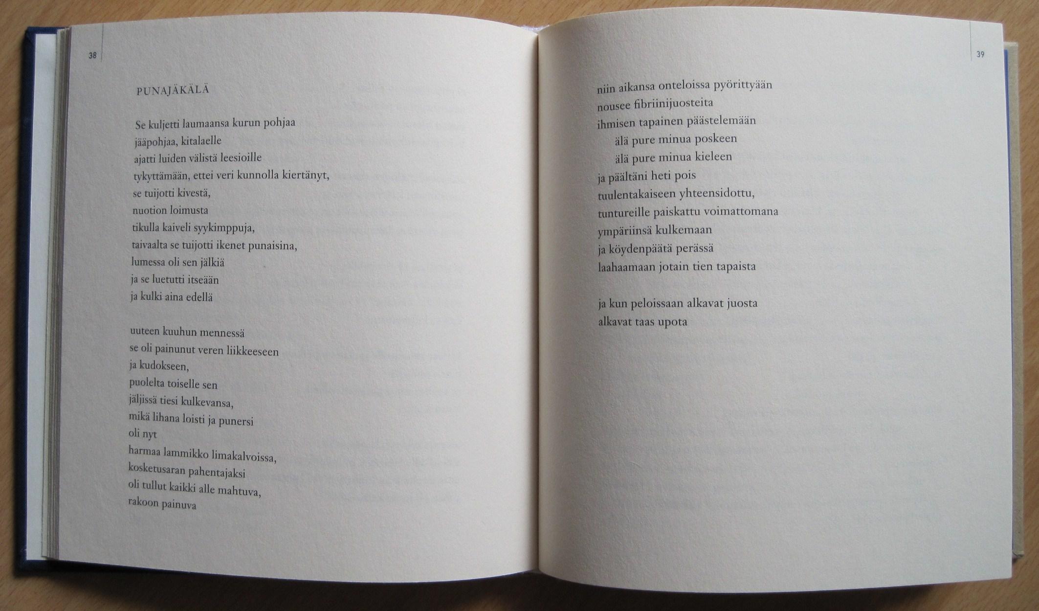 Hieno, pieni kiekura, sivut 38 ja 39