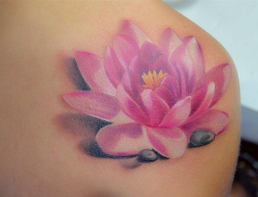 Flor De Loto Significado Tipos Concepto Definición Qué Es La