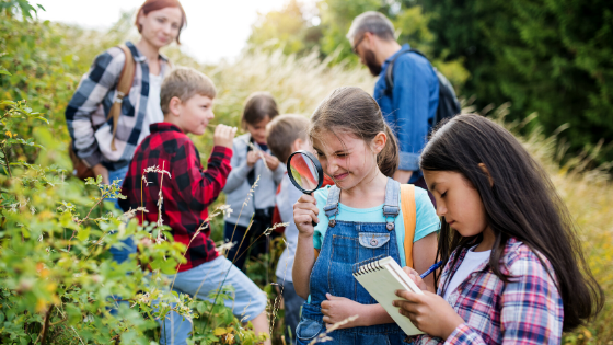 The Elephant in the Classroom: Nature-Inspired STEM Approaches Go Global