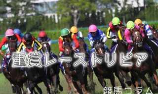 競馬コラム