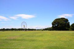 芝生のある公園ーin茨城県