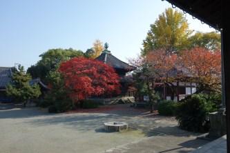 2016紅葉