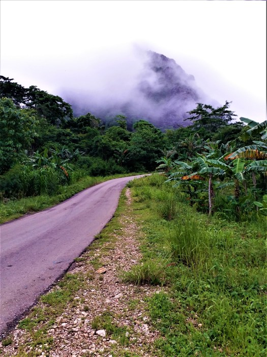 K in motion Travel Blog. Natural Wonders of West Timor. Misty Mount Fatuleu