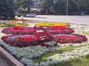 K in Motion Travel Blog. The Quirks of Eastern Kyrgyzstan. Bishkek City Centre. Flower Butterfly