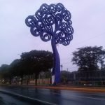 K in Motion Travel Blog. Love and Volcanoes in Nicaragua. Managua. Big Blue Tree
