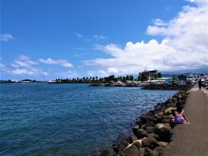K in Motion Travel Blog. Surprising Samoa. Seaside View