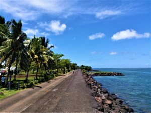 K in Motion Travel Blog. Surprising Samoa. Seaside View With Palm Trees
