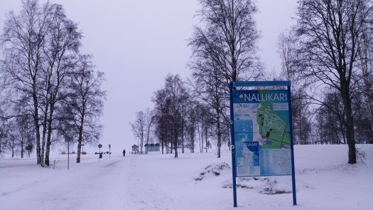 K in Motion Travel Blog. Chasing the Aurora Borealis in Finnish Lapland. Nallikari