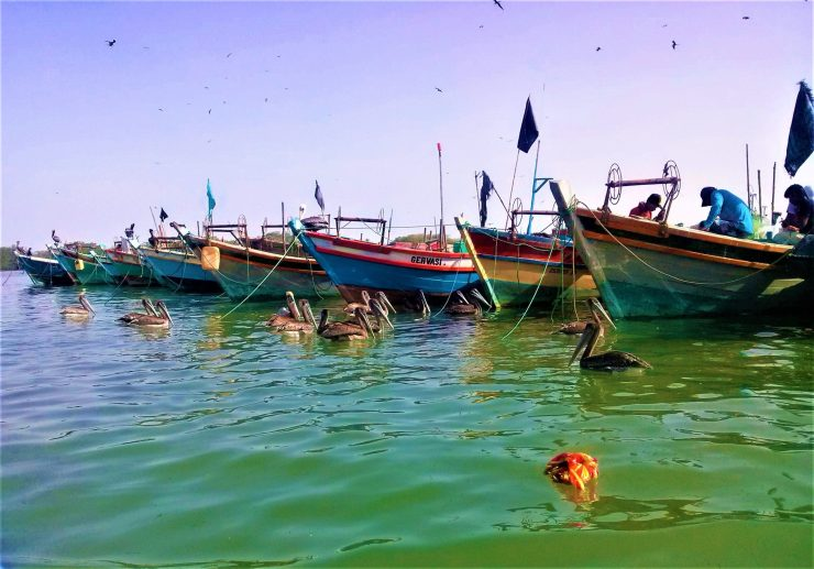 K in Motion Travel Blog. Mesmerising Lakes Around the World. Tumbes Mangrove Lake, Peru