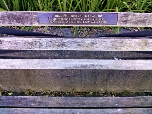 K in Motion Travel Blog. Amusingly Funny Signs Around the World. Park Bench in Vancouver