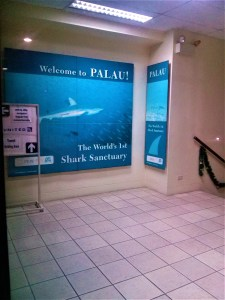 K in Motion Travel Blog. The Untouched Pacific Paradise of Palau. Welcome to Palau