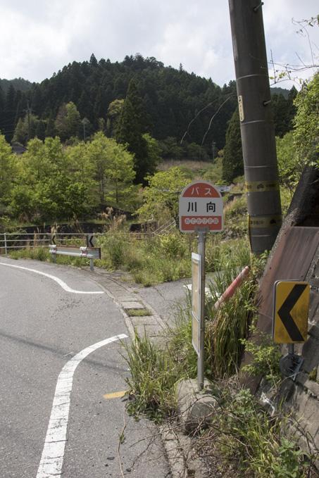 設楽町 川向バス停