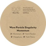 Wave Particle Singularity - Momentum