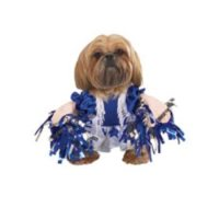 Dog Boutique - Dog Cheer Leader Costume