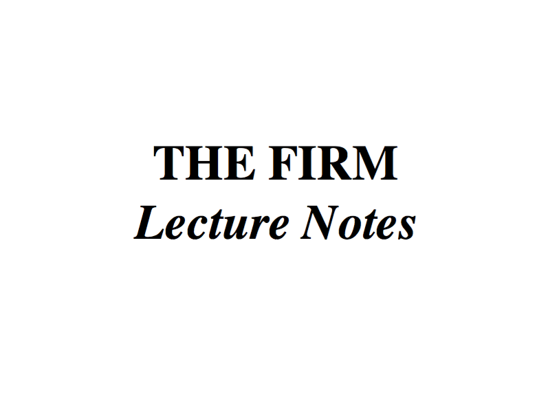 THE FIRM – LECTURE NOTES