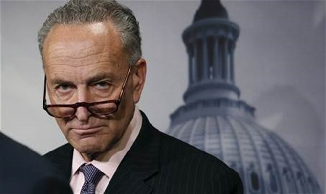 Image result for chuck schumer crazy