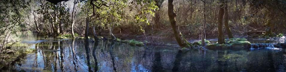 Sûrement la plus belle rivière de l'Hérault.