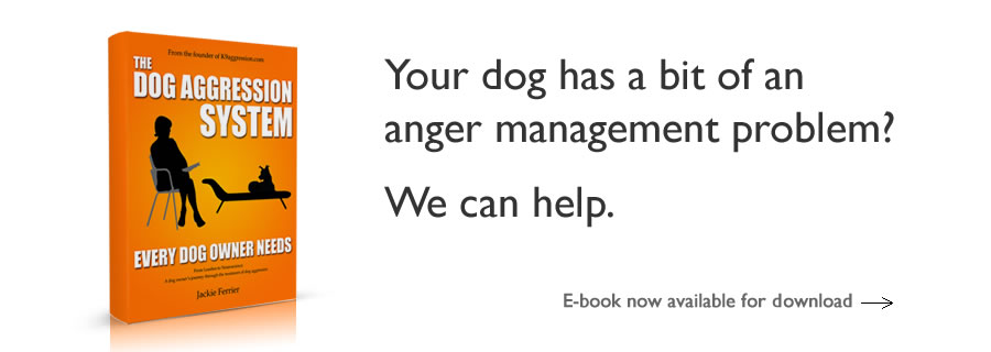 Your dog has a bit of an anger management problem? We can help. E-book now available for download.