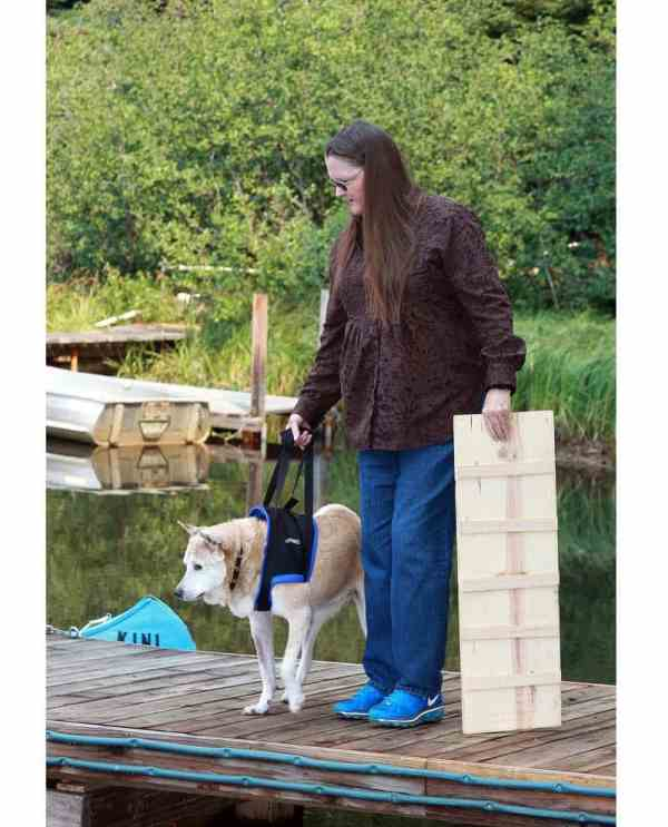 Walkabout Front Harness K9 Carts - Pet