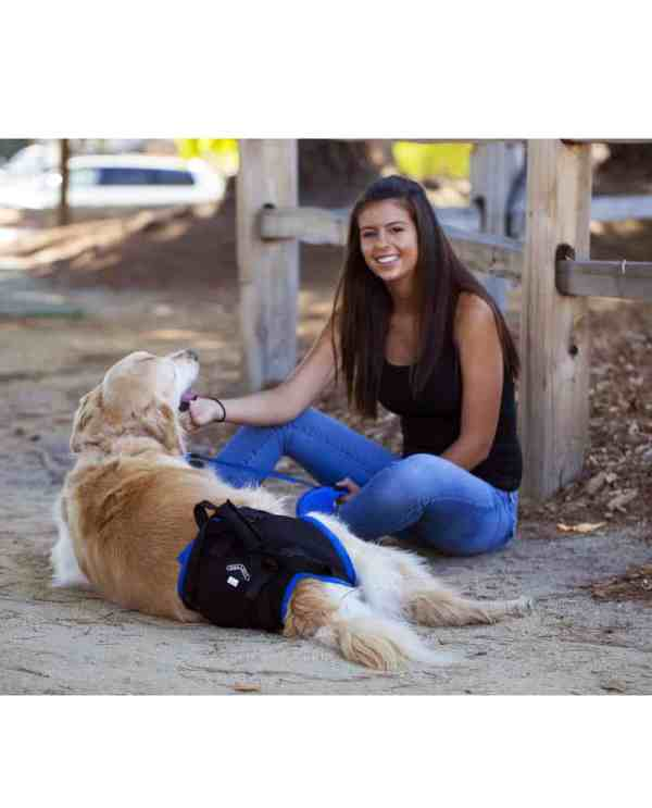 Walkabout Rear Dog Harness K9 Carts