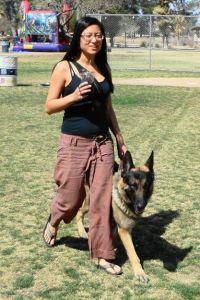 German Shepherd Tucson Arizona
