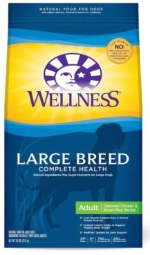 best dog food for big dogs