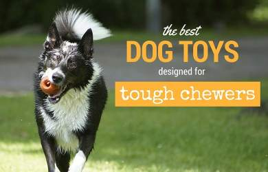 best dog toys for aggressive chewers
