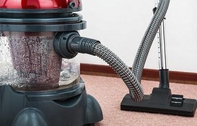 best vacuum for dogs
