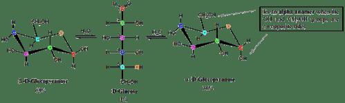 small resolution of diagrams of monosaccharides