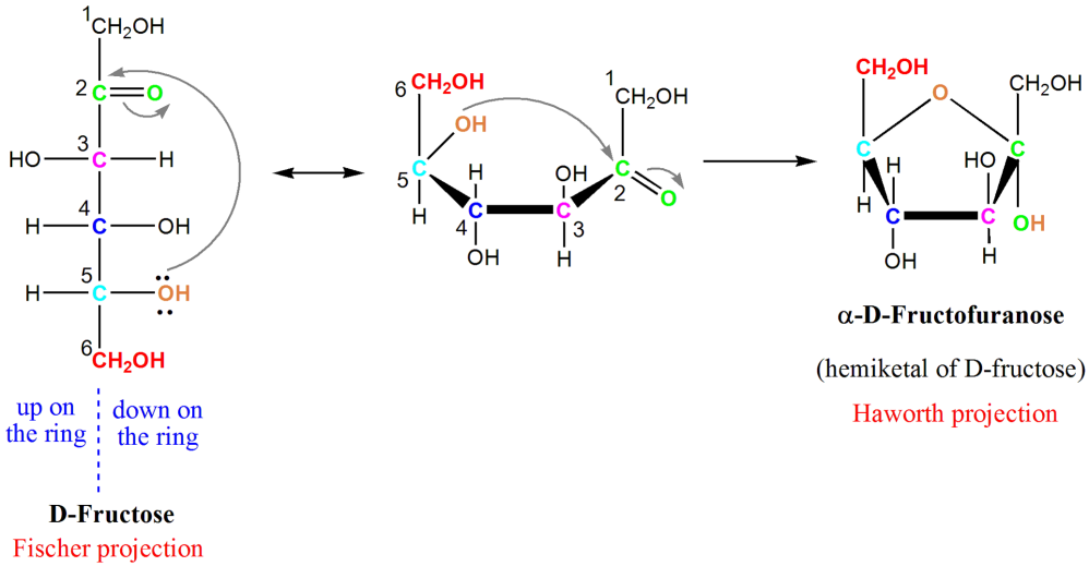 medium resolution of diagram of fructose cyclizing