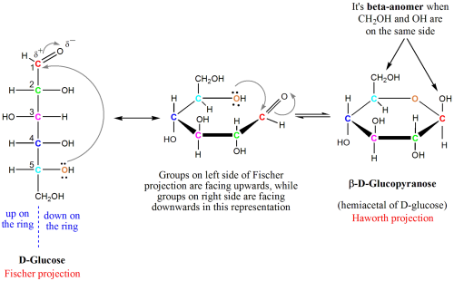 small resolution of diagram showing how to form a hemiacetyl of glucose from its original open form seen