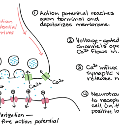 sequential turn signal wiring diagram [ 1608 x 879 Pixel ]