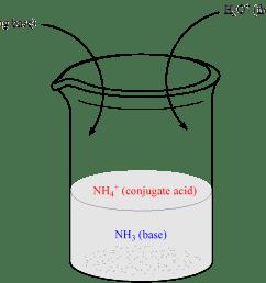 illustration of beaker containing weak base nh3 and its conjugate acid ammonium ion [ 1653 x 1136 Pixel ]