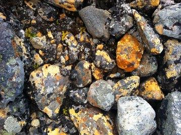 Fargerike steiner