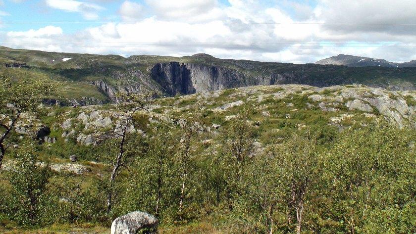 På Hardangerviddaplatået.