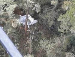 Pesawat Rimbun Air Jatuh di Papua, 3 Awak Tewas