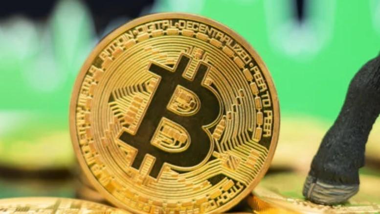 Bitcoin Tidak Akan Pergi