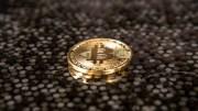 Menganggap Bitcoin Akan Anjlok Kembali