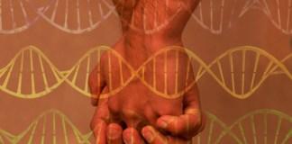 LGBT, teori gay gene, pernikahan sejenis