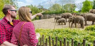 kebun binatang, tips berlibur di bonbin, larangan di bonbin
