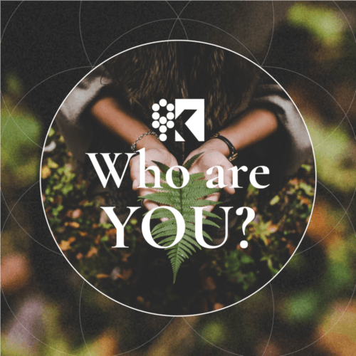 Course Image - logo who are you
