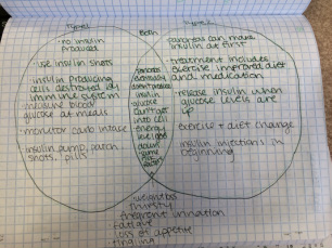 venn diagram type 1 and 2 diabetes canadian general electric motor wiring pbs classroom activities pltw biomedical sciences portfolio this picture meets the criteria for objective because it is a listing characteristics of