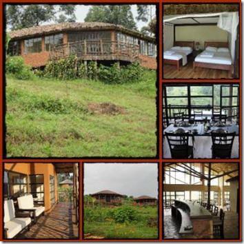 Mahogany Springs Lodge - Buhoma