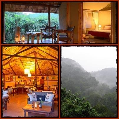 Sanctuary Gorilla Forest Camp - Buhoma - Bwindi Impenetrable Forest