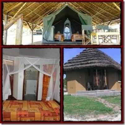Bwana Tembo Safari Camp - Murchison Falls Park