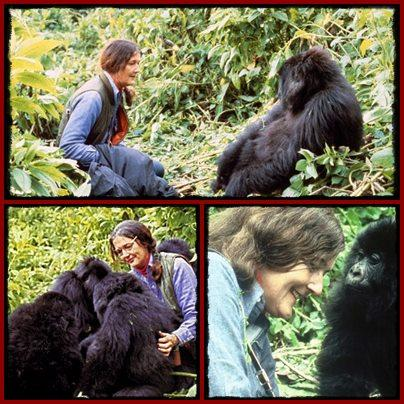 dian-fossey-with-gorillas