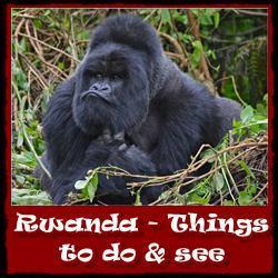 Rwanda-things-to-do-see-link