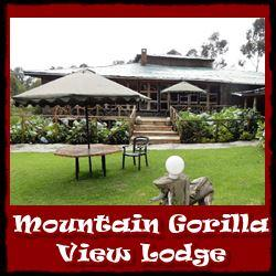 mountain-gorilla-view-lodge-link