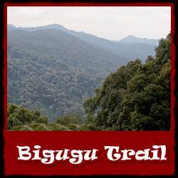 Bigugu-Trail