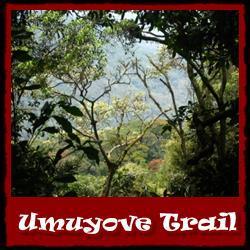 Umuyove-Trail